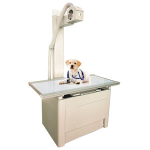 Veterinary X Ray Table