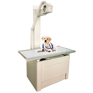veterinary exam table for animal radiology