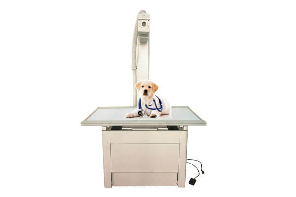 Veterinary x ray table for DR